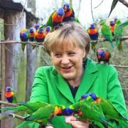 Merkel besucht Vogelpark